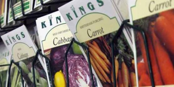 Garden-Shop-Services